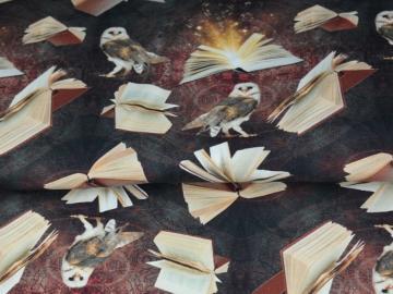 French Terry BW, Harry Potter digitaler Print, schwarz-braun-beige