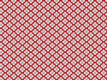 Popelinstoff BW, Blüte rot