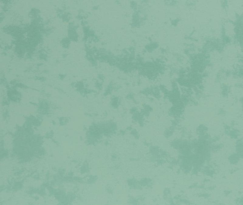 Jersey BW Batik mint
